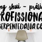 Feng Shui – Prática Profissional