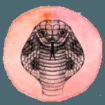 Serpente em 2019