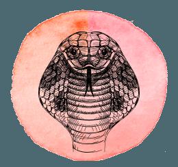 serpente-2019